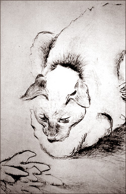 siamese-cat-art